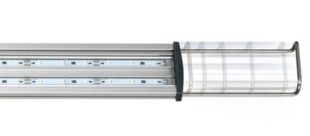 LED power daylight 608x268